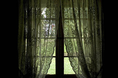 Cabin Window Photograph - Looking Out The Window Of A Log Cabin by Todd Gipstein