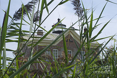 Saugerties Photograph - Looking Through To Lighthouse by Lori Amway