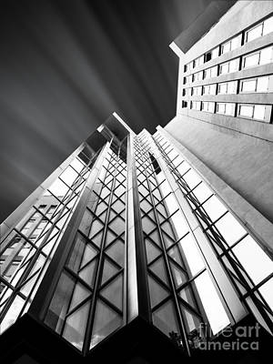 Looking Up Print by Stefano Senise