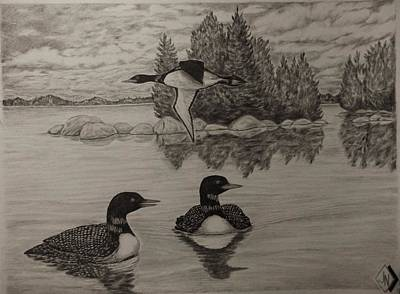 Loons Print by Jon North
