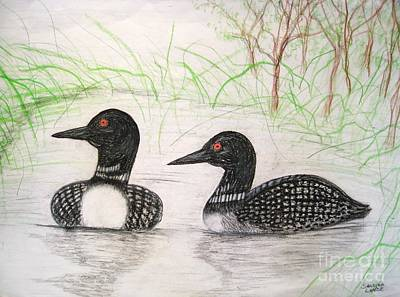 Loon Drawing - Loons Watching by Sandra Lunde