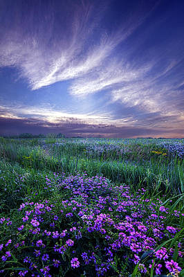 Violet Photograph - Lord Don't Go by Phil Koch
