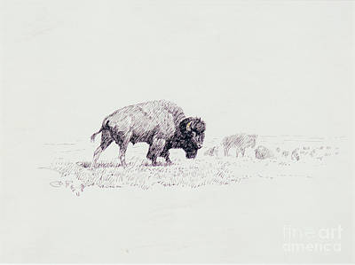 Lords Of The Yellowstone Print by Celestial Images