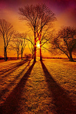 Amber Photograph - Lores Of Folk by Phil Koch