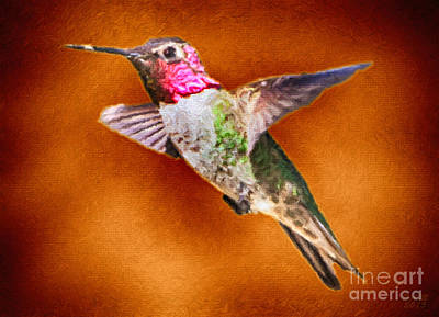 Hummingbird Painting - Lost And Alone by David Millenheft