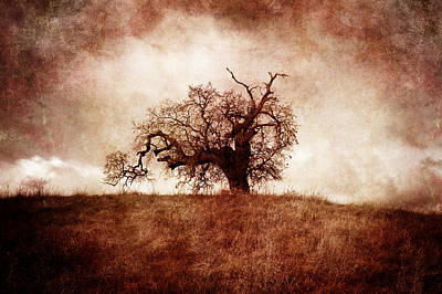 Goth Photograph - Lost And Wandering by Laura Iverson