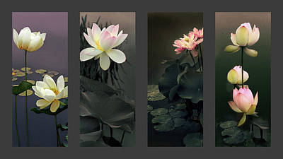Lotus Collection Print by Jessica Jenney
