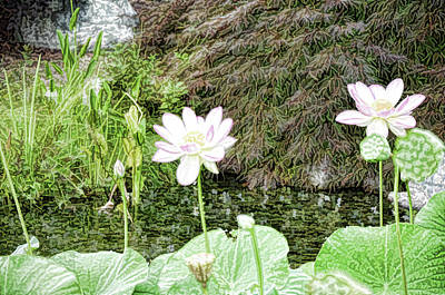 Park Painting - Lotus Flower In The Pond 9 by Lanjee Chee