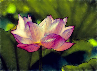 Flora Photograph - Lotus Flower by John K Woodruff