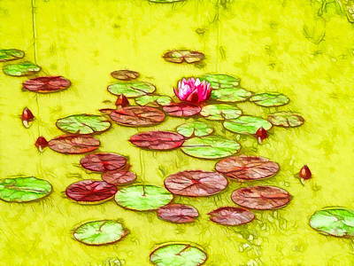 Lotus Flower On The Water 2 Print by Lanjee Chee