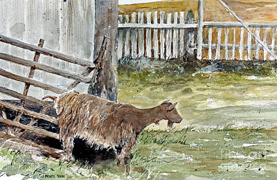 Louisbourg Resident Print by Monte Toon