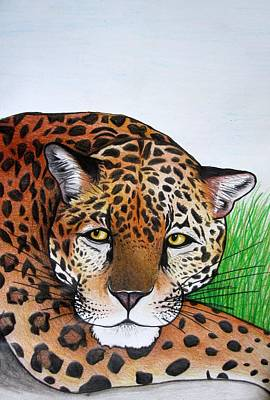 African Big Cats Drawing - Lounging Leopard by Mary Ellen Frazee