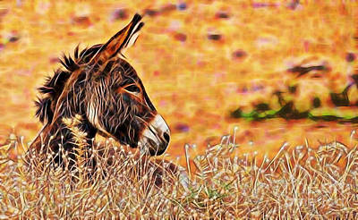 Donkey Mixed Media - Lounging by Marvin Blaine