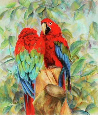 Macaw Drawing - Love Birds by Usha P
