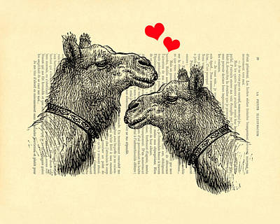 Camel Digital Art - Love Camels by Madame Memento