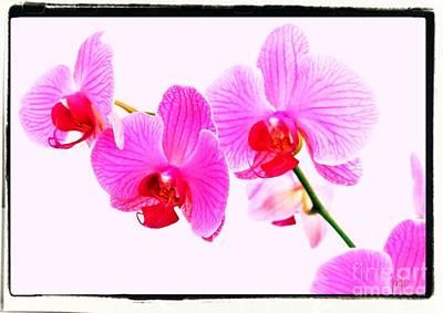 Love Is Flowers Given Original by Marsha Heiken
