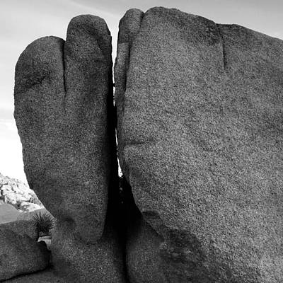 Love On The Rocks Print by JoAnn Lense