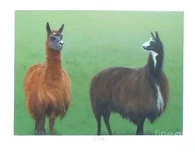 Llama Painting - Love by Phyllis Andrews