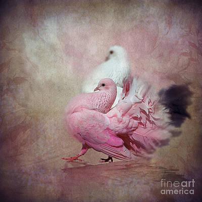Dove Digital Art - Loving Doves by Svetlana Sewell