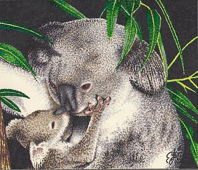 Koala Drawing - Loving Kiss by Scarlett Royal