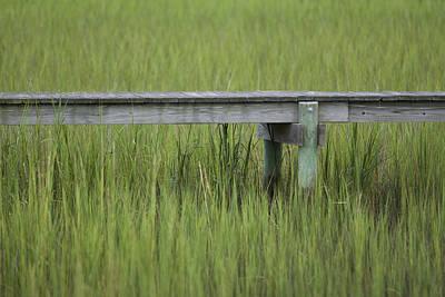 Lowcountry Dock Over Marsh Grass Print by Dustin K Ryan