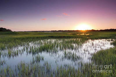 Lowcountry Flood Tide Sunset Print by Dustin K Ryan