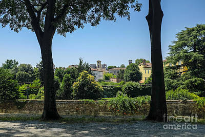 Lucca Photograph - Lucca Italy by Edward Fielding