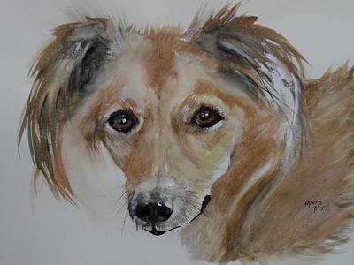 Lucky Dogs Painting - Lucky, Original Watercolor by David K Myers