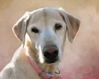 Labs Digital Art - Lucy In Pink by Diane Chandler