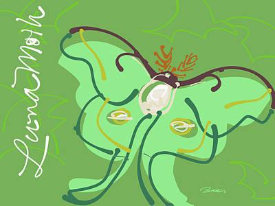 Luna Moth Drawing - Luna Moth by Brett LaGue