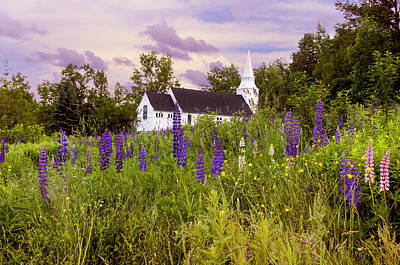 Flowers Photograph - Lupine Field Sunset With Chapel by Donna Doherty