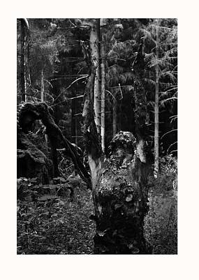 Luzia / 49 Print by Jean-Marie Bottequin