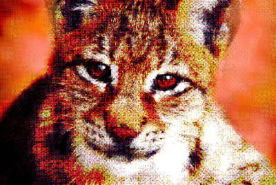 Puppy Mixed Media - Lynx  by Enki Art