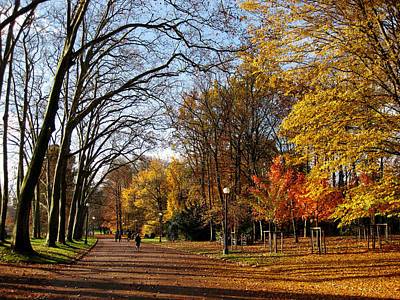 Lyon France Photograph - Lyon Park In Autumn by Mountain Dreams