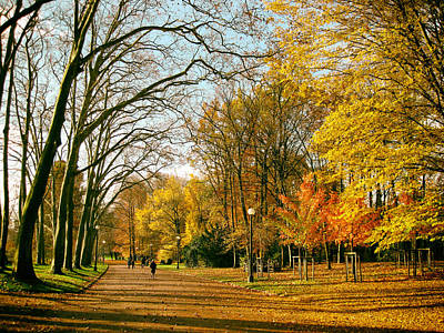 Lyon France Photograph - Lyon Park In Fall by Mountain Dreams