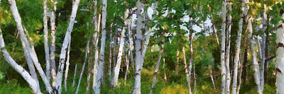 Lakeshore Digital Art - M-22 Birches by Michelle Calkins