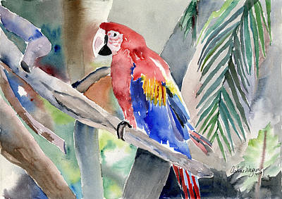 Parrots Painting - Macaw by Arline Wagner