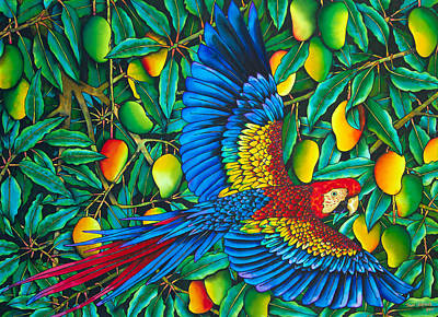 Exotic Bird Painting - Macaw In Mango Tree - Exotic  Bird by Daniel Jean-Baptiste
