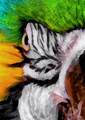 Macaw Digital Art - Macaw Upclose 1 by Ernie Echols