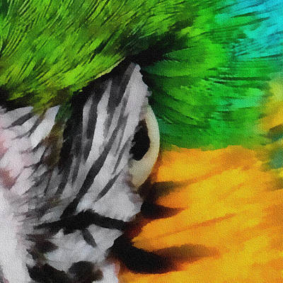 Macaw Digital Art - Macaw Upclose 3 by Ernie Echols