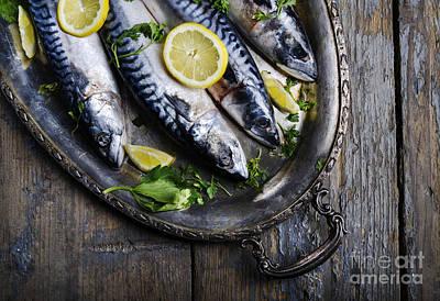 Mackerels On Silver Plate Print by Jelena Jovanovic
