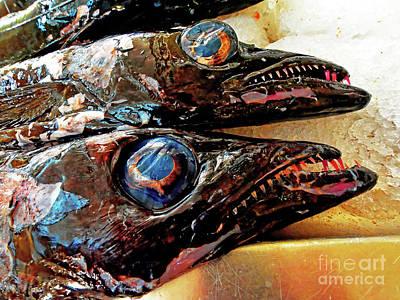 Cristiano Ronaldo Photograph - Madeira Black Scabbard Fish by Wilf Doyle