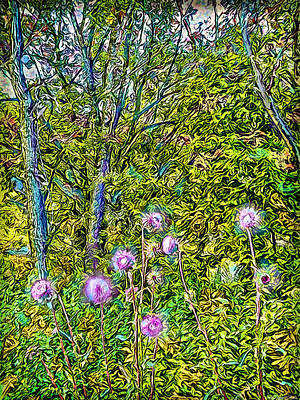 Trippy Digital Art - Forest Thistles - Thistle Wildflowers In Colorado Woods by Joel Bruce Wallach