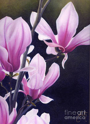 Magnolia Celebration II Print by Daniela Easter
