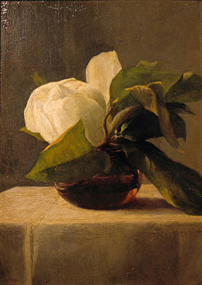 Painting - Magnolia by John LaFarge