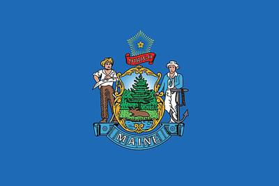 Coat Of Arms Painting - Maine State Flag by American School