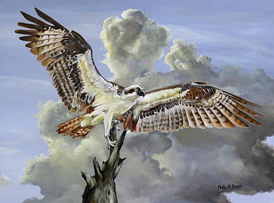 Osprey Painting - Majestic Sea Hawk by Phyllis Beiser