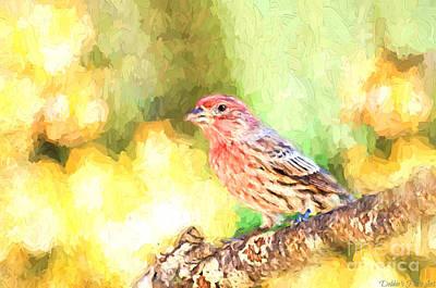 Male House Finch - Digital Paint Print by Debbie Portwood