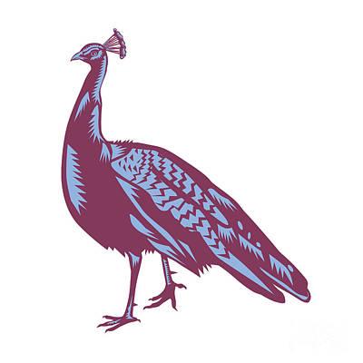 Male Indian Peacock Woodcut Print by Aloysius Patrimonio