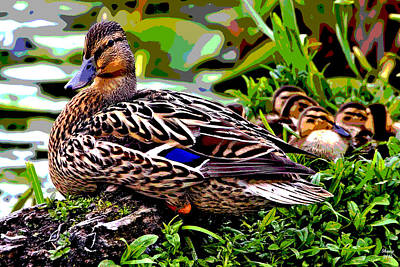 Mallard And Chicks Print by Charles Shoup